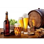 11 интересных фактов о пиве
