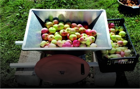 Ручные дробилки для яблок