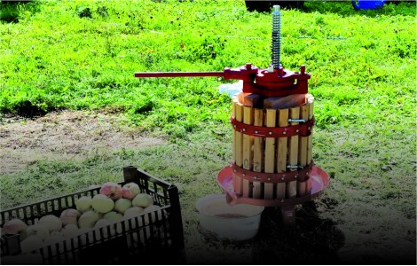 Прессы для отжима сока ягод и фруктов